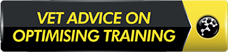 vet-advice-optimising-training