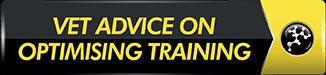 vet-advice-optimising-training